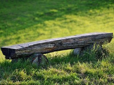 Eine Holzbank im Grünen